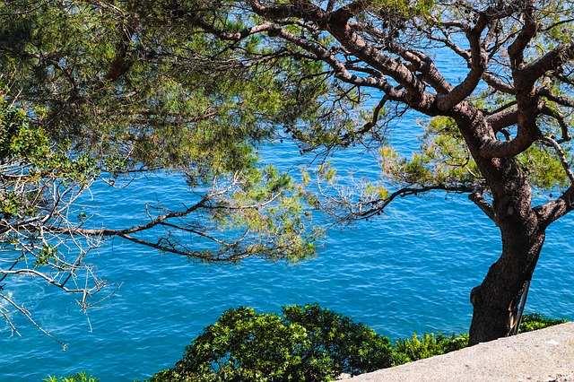 30 Gründe wieso Du sofort nach Monaco reisen solltest
